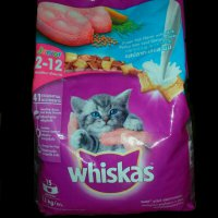 Whiskas junior 1.1kg (D)