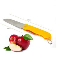 Fruit Folding Knife