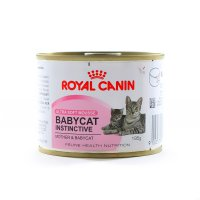 Royal Canin Wet Food Baby Cat Instictive