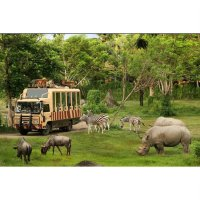 Promo Tiket Bali Safari Marine Park (Package Safari Explore) Dewasa