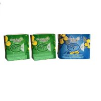 AVAIL PEMBALUT HERBAL - PPD - PANTYLINER 2 - DAYUSE 1