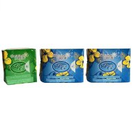 AVAIL PEMBALUT HERBAL - PDD - PANTYLINER 1 - DAYUSE 2