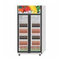 GEA RSA Showcase Cooler 2 pintu Opal