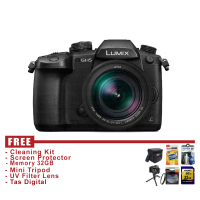 Panasonic Lumix DC-GH5 Kit 12-60mm - Hitam - FREE Accessories