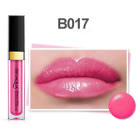 BIOAQUA 3D SHINE LIP GLOSS 24H COLOR FASHION B017