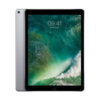 Apple iPad Pro 2017 256 GB Tablet - Space Gray [Wi-Fi 4G-LTE/ 12.9 Inch]