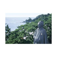 Epoch Jigsaw Puzzle Sakamoto Ryoma statue looking to the Pacific Ocean Katsurahama