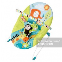 Bright Starts Monkey Bouncer - Vibrate