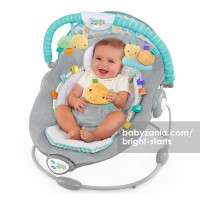 Bright Starts Taggies Soft and Soothe Bouncer