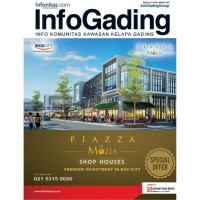 [SCOOP Digital] InfoGading / MAR 2017