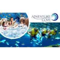 Adventure Cove Water Park Singapore Adult