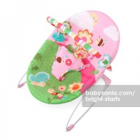 Bright Starts Sweet Bees & Buggies Bouncer - Music
