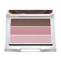 [macyskorea] Sante Eyeshadow Trio Rose Wood 03, 4.72 Gram/6446820