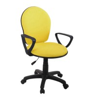 Prissilia - Secretary Chair Orchid [JS-3017]