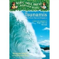 Novel - Tsunamis and Other Natural Disasters: A Nonfiction Companion to High Tide in Hawaii