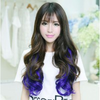 HO4542 - Hair Extension Clips Gradient Blue and Brown