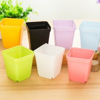 [1+1] Colorful Mini Flower Pot Bunga Vas Bunga Mini Plastik Elastis - Hiasan Ruangan Warna Warni