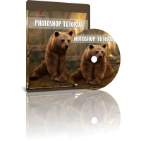 Photoshop Tutorial - Lonely Bear