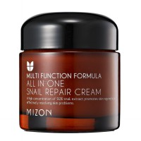 MIZON All in One Snail Repair Cream 75Gram