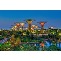Garden By The Bay (Adult)