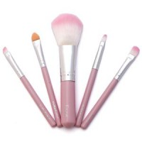 Mini Brush Set HK Isi 5 No Box