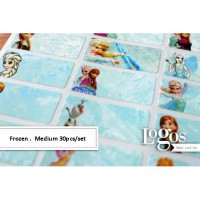Frozen Sticker MEDIUM Name Label