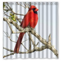 [globalbuy] Northern Cardinal Bird Shower Curtain Bath Curtains Waterproof Mildew Resistan/4491196
