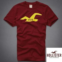 [Crown King - 100% activation Hollister Polo T 323-243-0697-052-SG