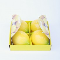 Lilin Bentuk Lemon 4 (018-220)