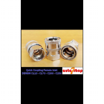 Quick Coupling Female Inlet Densin