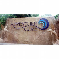 Adventure Cove Water Park Singapore Child