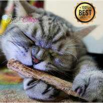 Sikat Gigi Kucing Stick - Cat Snacks