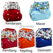 Cloth Diaper Pempem Snap Insert Litty