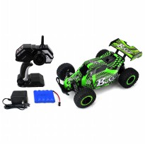 RC Car Cheetah King Buggy 2.4 GHz PRO System 1:16 Spring Shock RTR
