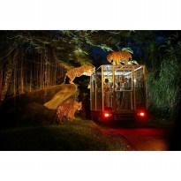 Night Safari Package (Bali Safari & Marine Park)