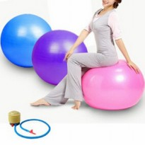 Gym ball Bola Fitness Free Pompa