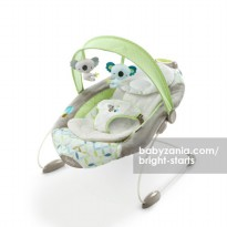 Bright Starts Ingenuity SmartBounce Automatic Bouncer - Brighton
