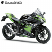 Kawasaki Ninja 250 LTD - Green