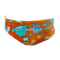 Arena AJT-16251 Junior Boys Swim Trunks Celana Renang - Orange [Size 26J]