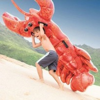INTEX LOBSTER Ride On PELAMPUNG BAN RENANG ANAK