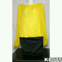Dress Paha Korea Lengan Panjang KB075