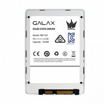 GALAX SSD HOF (HALL OF FAME) SERIES 512GB ( R/W : Up to 520/500 MB/s )