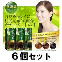 Rishiri Hair Color Treatment Japan 40g