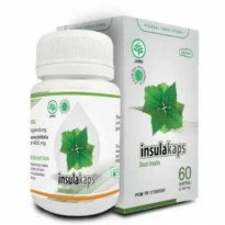 Kapsul Obat Ekstrak Herbal Daun Insulin Diabet Diabetes Asli Original
