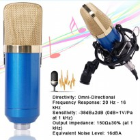 BM-800 Audio Condenser Microphone Studio Sound Recording Shock -TH137