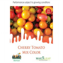 1 Pack Biji Tanaman TOMAT CHERRY Mix Color Red & Yellow Maica Leaf
