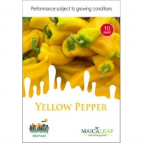 1 Pack Biji Tanaman YELLOW PEPPER Maica Leaf