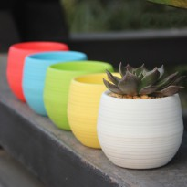 Mini Pot Bunga Hias Kaktus Tanaman - 5pcs - Multi-Color