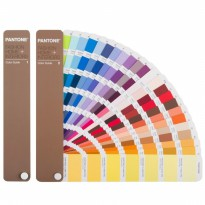 PANTONE FHIP110N FOR FASHION & HOME INTERIOR