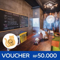 The Cat Cabin - 1 Hour Entry Voucher for Weekend